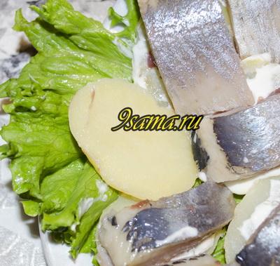 Русская закуска селедка с картошкой